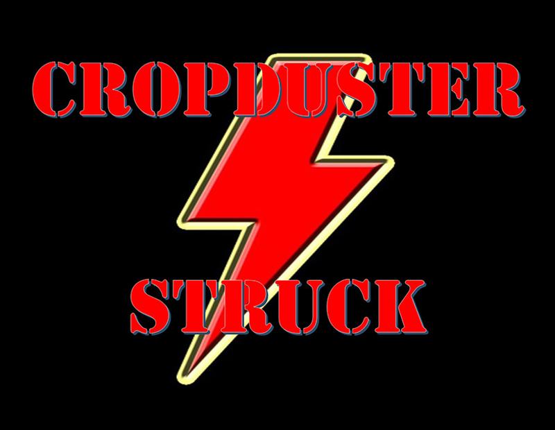 Cropduster - struck, Shigawake Music Festival